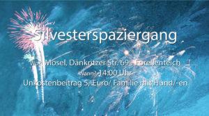 Silvesterausflug @ Mosel, Dänkritzer Wald | Zwickau | Sachsen | Deutschland