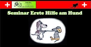 1. Hilfe Seminar @ Hundetrainingsplatz | Glauchau | Sachsen | Deutschland