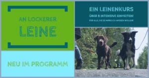Lockere Leine @ Hundetrainingsplatz | Glauchau | Sachsen | Deutschland